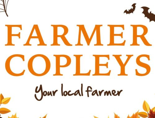 Farmer Copleys Pumpkin Festival 2021
